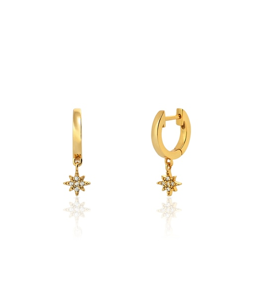 POLAR gold hoops earrings