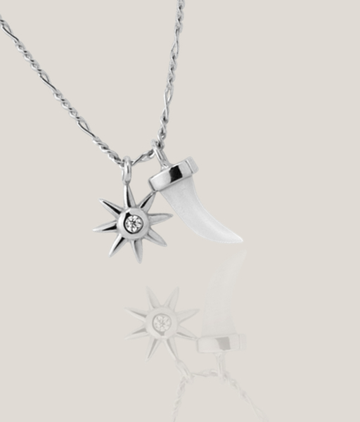 SUN HORN silver necklace
