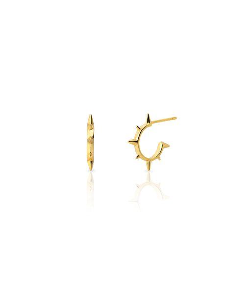 PINXUS gold earrings